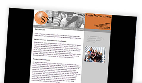 Synergy Youth International
