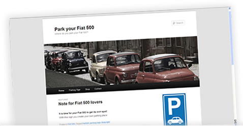 Portfolio Wizard Wise - Park your Fiat 500